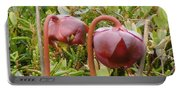 Pitcher Plant Portable Battery Charger