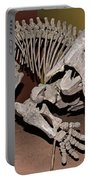 Placerias Fossil Portable Battery Charger