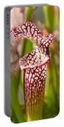 Plant - Pretty As A Pitcher Plant Portable Battery Charger