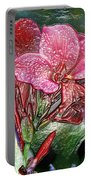 Plastic Wrapped Pink Flower By Diana Sainz Portable Battery Charger
