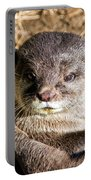 Play Time For Otters Portable Battery Charger