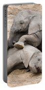 Playful Elephant Calves Portable Battery Charger