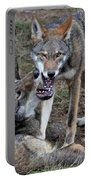Playful Wolves Portable Battery Charger