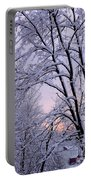 Playhouse Through Snow Portable Battery Charger