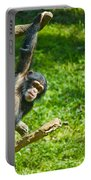Playing Chimp Portable Battery Charger