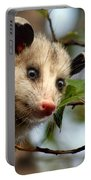 Playing Possum Portable Battery Charger