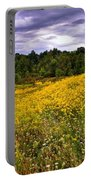 Pleasant Meadow Foreboding Sky Portable Battery Charger