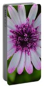Pleasing Beauty Portable Battery Charger