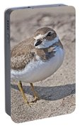 Plover Lover.. Portable Battery Charger