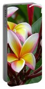 Plumaria  . . . . Portable Battery Charger