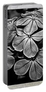 Plumbago In Gray Portable Battery Charger