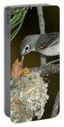 Plumbeous Vireo Feeding Chicks In Nest Portable Battery Charger