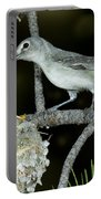Plumbeous Vireo With Four Chicks In Nest Portable Battery Charger