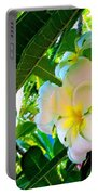 Plumeria Beauty Portable Battery Charger