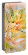 Plumeria Fireworks Portable Battery Charger