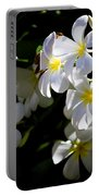 Plumeria Glow Portable Battery Charger