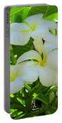 Plumeria Greeting The Morning Portable Battery Charger