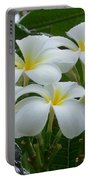 Plumeria In The Rain Portable Battery Charger