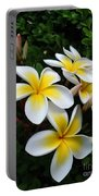 Plumeria In The Sunshine Portable Battery Charger