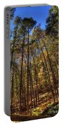 Pocono Trees Portable Battery Charger