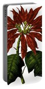 Poinsettia A Traditional Christmas Plant Vintage Poster Portable Battery Charger