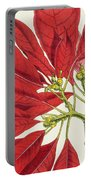 Poinsettia Pulcherrima Portable Battery Charger by WG Smith
