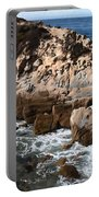 Point Lobos Coast 2 Portable Battery Charger