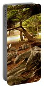 Point Lobos Whalers Cove Whale Bones Portable Battery Charger by Barbara Snyder