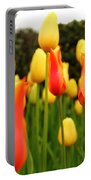 Pointy Tulips Portable Battery Charger