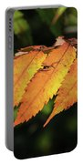 Poison Sumac Golden Kickoff To Fall Colors Portable Battery Charger