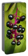 Pokeweed Portable Battery Charger
