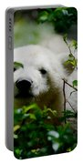 Polar Bear Cub Portable Battery Charger