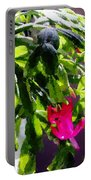 Polka Dot Easter Cactus Portable Battery Charger