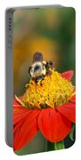 Pollinator Portable Battery Charger