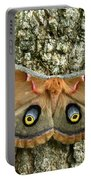 Polyphemus Moth Portable Battery Charger