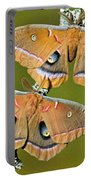 Polyphemus Moths Portable Battery Charger
