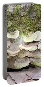Polypore Abstract Portable Battery Charger