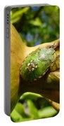 Pomegranate Bug Jewel Case Portable Battery Charger