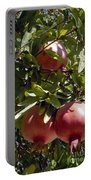 Pomegranate Tree  Portable Battery Charger