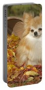 Pomeranian Dog Portable Battery Charger