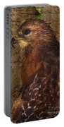 Ponce Inlet Hawk Portable Battery Charger