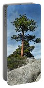 Ponderosa Pine And Granite Boulders Portable Battery Charger