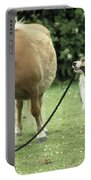 Pony With Lead Rope Held By Sitting Dog Portable Battery Charger