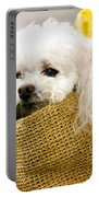 Poodle In Pouch Portable Battery Charger