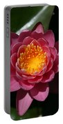 Pools Of Pollen Portable Battery Charger