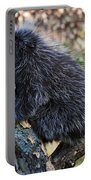 Porcupine Sleeping Portable Battery Charger