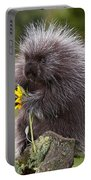Porcupine With Arrowleaf Balsamroot Portable Battery Charger