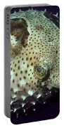 Porcupinefish Portable Battery Charger