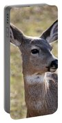 Portrait Of A Deer Portable Battery Charger