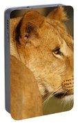 Portrait Of A Dreamy Lioness  Portable Battery Charger